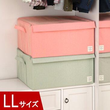衣類収納ボックス LLサイズ 約 幅53cm 奥行43cm 高さ27cm 衣装ケース 布製 フタ付き