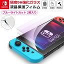 【2枚入】Nintendo Switch 強化ガラスフィルム