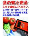 送料無料!日本語説明書付き!代引き発送可。全数日本国内検品後の発送で安心!高性能放射能測定器のこの1台で安心確認!【送料無料】【即納】ガイガーカウンター 日本語表示 放射能測定器 SW83A【マラソン1207P02】