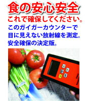 送料無料!日本語説明書付き!代引き発送可。全数日本国内検品後の発送で安心!高性能放射能測定...