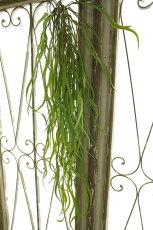 造花壁掛けフェイクグリーンインテリアグリーン観葉植物【造花ホヤリネアリス(グリーン)】