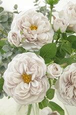 造花(バラ)インテリアグリーン観葉植物フェイクグリーン【造花エクリュローズ(イノセントアンティークライラック)】