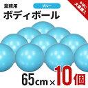 バランス感覚を鍛えるボディーボール65cm(ブルー)業務用セット NR-2235×10 ヨガボール ダイエット エクササイズ ヨガ ピラティス ボール 運動 バランスボール 体幹 トレーニング バランス