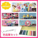 【50色 色鉛筆】 プリンセス ミニオンズ ミッキー ミニー スヌーピー トイストーリー