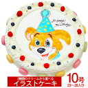 ≪写真ケーキ お祝い≫シェリーブランのキャラクターケーキ10...