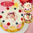 写真ケーキ ビスキュイ付フルーツ生クリーム 7号バレンタインバースデーケーキ 誕生日ケーキ 【送料無料】 フォトケーキ イラスト プリント 11〜14名様用 大きい サプライズ 冷凍