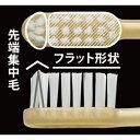【歯科医院専売歯ブラシ】ルシェロW-10 GC 5本 歯ブラシ ハブラシ 歯科専売品 美白 ホワイトニング ステイン除去【ラッピング対応可】 3