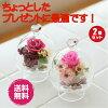 【プリティーローズ(ピンクとレッドの2個セット)】ガラスドームプリザーブドフラワー花ガーデン