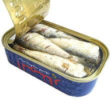 オイル・サーディン缶詰1ケース(50缶入)(いわしのオリーブオイル漬)