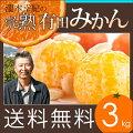 完熟有田みかん和歌山県有田郡の自然豊かな産地でスクスク育ちました。