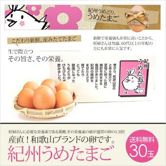 【送料無料】鶏卵和歌山県産紀州うめどりうめたまご30玉(破損保証3玉含む)「たまご(玉子)(卵)」「紀州梅」【10P31Aug14】