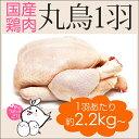 国産 鶏肉 紀州うめどり 丸鶏 ( 丸鳥 ) 中抜き 1羽 約2.2kg〜約2.8kg 和歌山県産 銘柄鶏 鶏肉(とり肉/鳥肉) クリスマスに丸鶏ローストチキン(丸鳥)を お取り寄せ(鶏肉 1羽) 丸鳥でローストチキント体