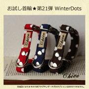 WinterDots