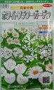 サカタの花の種ホワイトフラワーガーデン