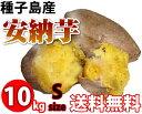安さの理由は市場直送!! 1kgあたり450円!種子島産安納芋ミニだから超お買い得!しっとりあま〜...