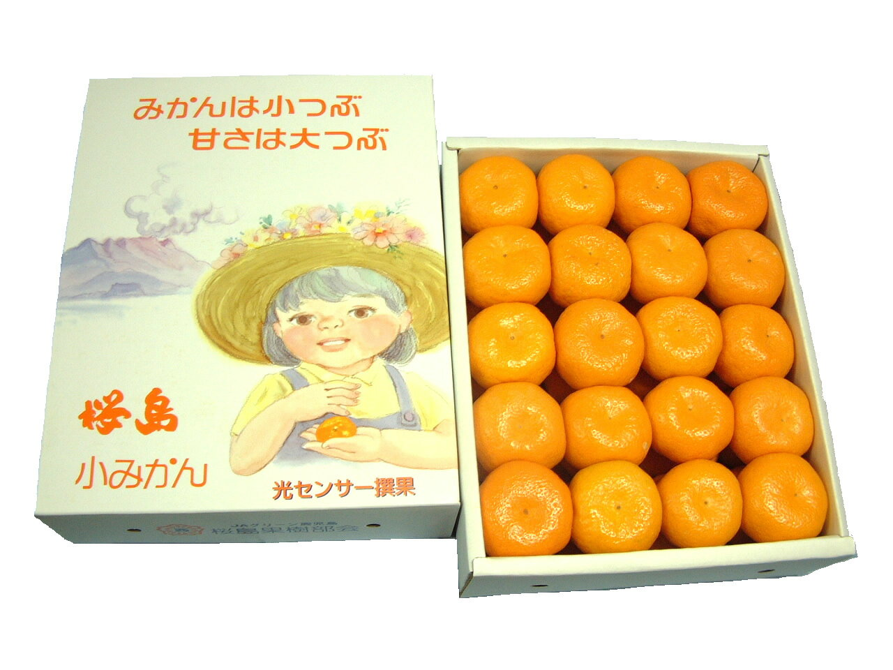 世界一ちいさな可愛いみかん★桜島小みかん 化粧箱 2kg