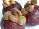 柔らかい果肉、繊細な甘み★デリケートな食感は生食ならでは♪ビタミンたっぷりの東南アジア果...