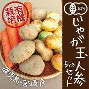 有機野菜セットじゃがいも玉ねぎ人参計5kgカレー材料九州野菜鹿児島県宮崎県有機JAS冷蔵便