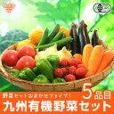 有機野菜セット おまかせ5品目 九州産 鹿児島県 有機栽培 ...