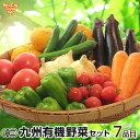 有機野菜セット おまかせ7品目 九州 鹿児島県 有機栽培 有機JAS ……