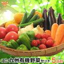 有機野菜セット おまかせ5品目 九州産 鹿児島県 有機栽培
