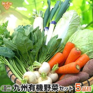 旬の野菜の詰め合わせ!有機栽培された新鮮な野菜セットランキング≪おすすめ10選≫の画像