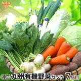 有機野菜セット おまかせ7品目 九州 鹿児島県 有機栽培 有機JAS 冷蔵便 オーガニック 無農薬 西日本 詰め合わせ 送料無料