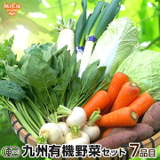 有機野菜セットおまかせ7品目九州産鹿児島県有機栽培有機JAS冷蔵便オーガニック無農薬西日本詰め合わせ送料無料父の日