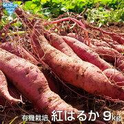 紅はるか9kg有機栽培鹿児島県産宮崎県産土付きさつまいも薩摩芋サツマイモからいもべにはるか国産スイートポテト焼き芋無農薬organicオーガニック
