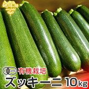 ズッキーニ10kg有機栽培鹿児島県産熊本県産宮崎県産JAS認証大きさおまかせずっきーにラタトゥイユ無農薬まとめ買い業務用