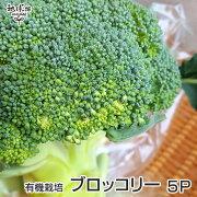 ブロッコリー5P有機栽培送料無料鹿児島県産ぶろっこりーオーガニックorganic冷蔵便
