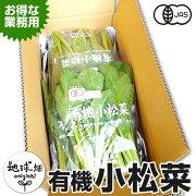 小松菜200g×10P有機栽培鹿児島県産無農薬オーガニックorganicこまつなコマツナ冷蔵便
