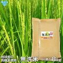 無洗米 一分搗き米 8kg 鹿児島県産 2019年産 有機米使用 化学肥料・農薬・除草剤・防腐剤不使用 むせんまい 一部付き 一分米 玄米 時短 送料無料