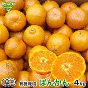 ポンカン有機栽培4kg鹿児島県産有機JASぽんかん柑橘みかんオレンジくだものサイズ混合自宅用オーガニックorganic