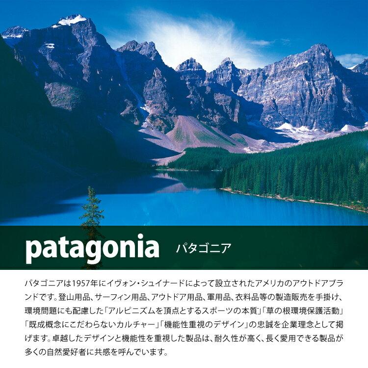 patagonia(パタゴニア)『トラベルトートパック)』