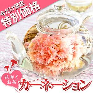 母の日 2015 特別価格 特価 ギフト カーネーション咲く工芸茶10種とガラスのティーポット 優雅セット 送料無料