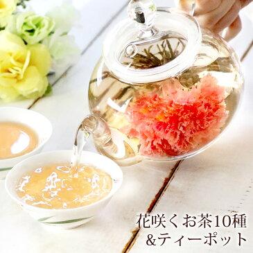 プレゼント ギフト カーネーション 花 咲く お茶 工芸茶10種 と ティーポット 優雅セット 花茶 誕生日 母 送料無料