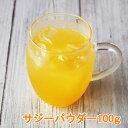 サジーパウダー100g シーバックソーン 沙棘 粉末 パウダー 果汁パウダー サジージュース