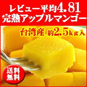 マンゴー 台湾マンゴー約2.5kg前後 アップルマンゴー 送料無料