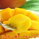 マンゴー 台湾マンゴー約2.5kg前後 アップルマンゴー 予約商品 (7月中旬頃入荷予定) 送料無料 台湾直輸入 生マンゴー 果物 フルーツ