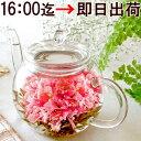 16時迄の確定 即日出荷 お花のつぼみとティーポット 送料無料 カーネーション茶