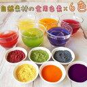 食紅 セット ナチュラルカラーパウダー 着色料 食用 粉末 食用色素 6色セット 赤 紫 黄 橙 青 緑 天然着色料 色粉 アイシング 色水あそび バスボム ハロウィン クリスマス・・・
