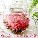 【カーネーション茶とティーポットセット】熱湯で花が咲く! 楽天年間ランキング花部門3年連続1...