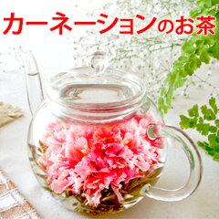 お花のつぼみ&カラーティー・ティーポット あす楽対応 母の日・各種お祝い/工芸茶 ギフト/誕生…