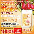 【初回限定お試しポッキリキャンペーン】山茱萸の想い1袋31粒入