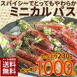 【メール便限定送料無料】1000円ぽっきり スパイシーなソフトミニカルパス 230g