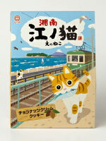 湘南江ノ猫