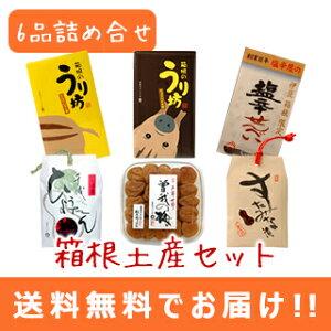 ●【送料無料】箱根土産セット