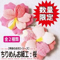 【ちりめん細工館】桜