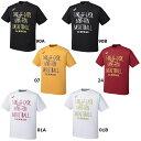 アシックスプリントTシャツHS XB981Nバスケットボール バスケット バスケ半袖 ユニセックス 男女兼用ASICS 2016SS ゆうパケット対応 ラッキーシール対応